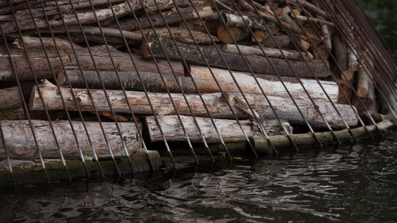 photographie d'une armature en métal grillagé, retenant de nombreux bouts de bois, accrochée sur les berges. Détail de l'oeuvre