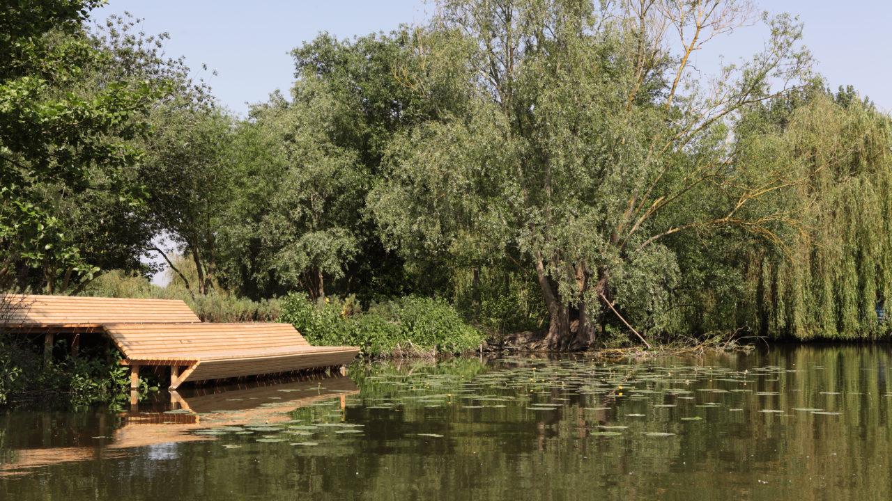 photographie d'un large et long banc en bois, aux lignes cassées, créant des assises et une forme de pente douce de la parcelle à l'eau
