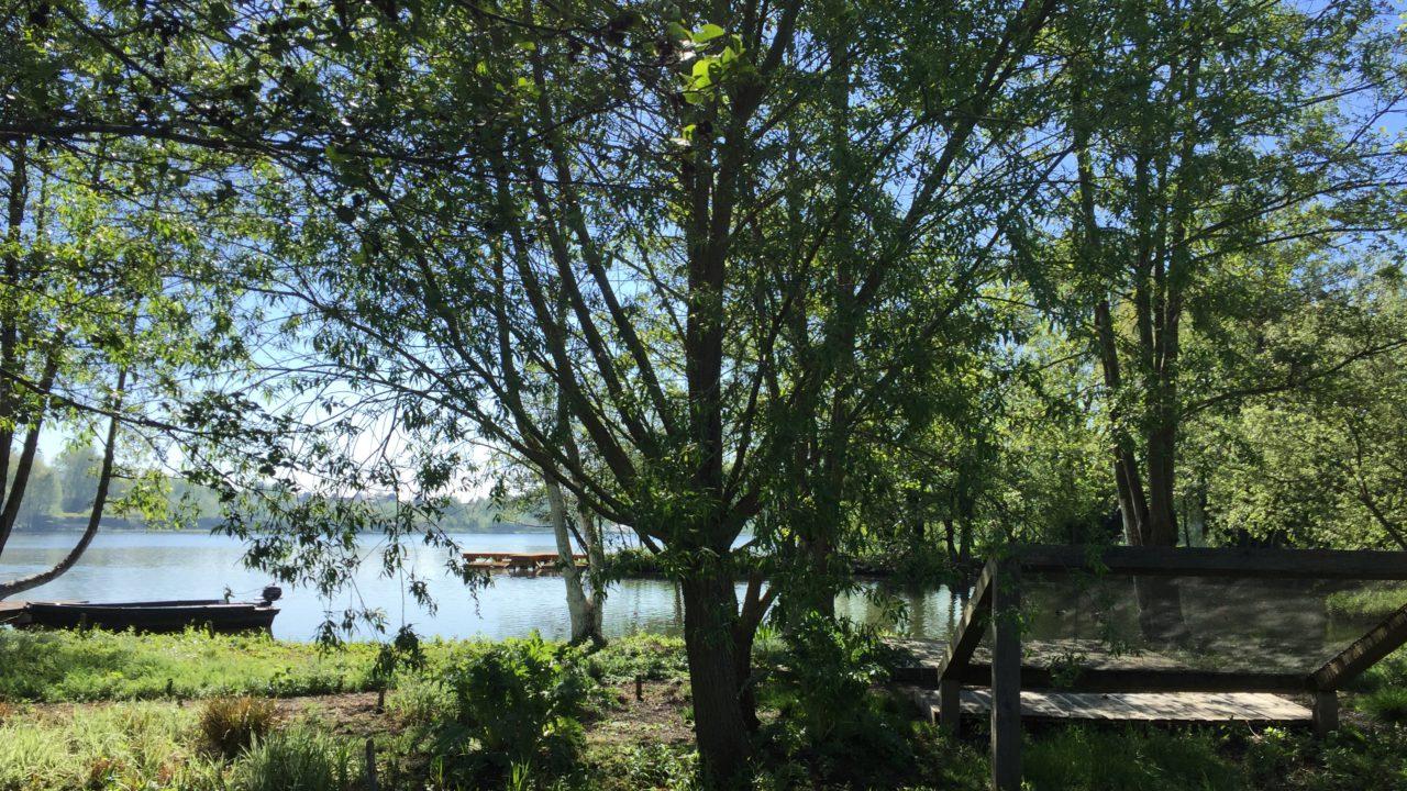 photographie d'une vue sur un grand transat carré et sur l'étang de Clermont, depuis la deuxième parcelle de l'oeuvre