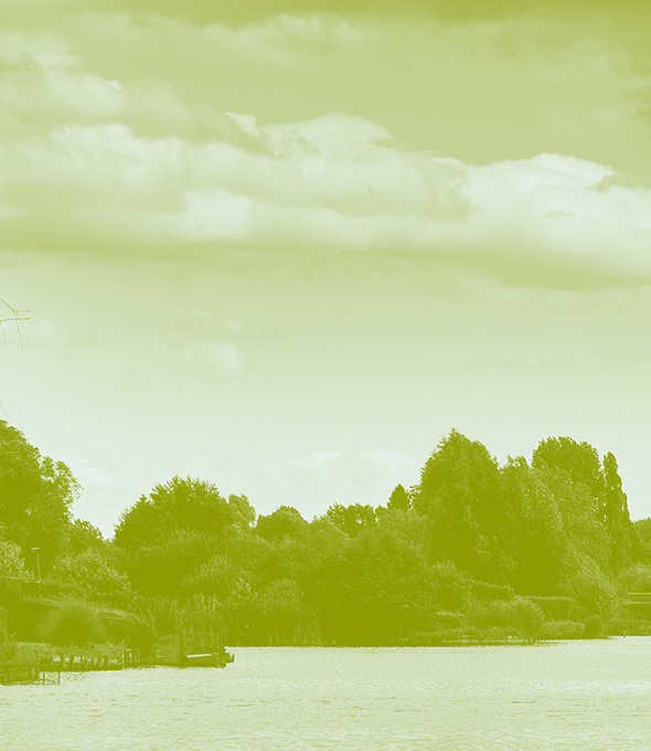 photographie d'une vue des Hortillonnages. Un voile vert a été ajouté à la photo