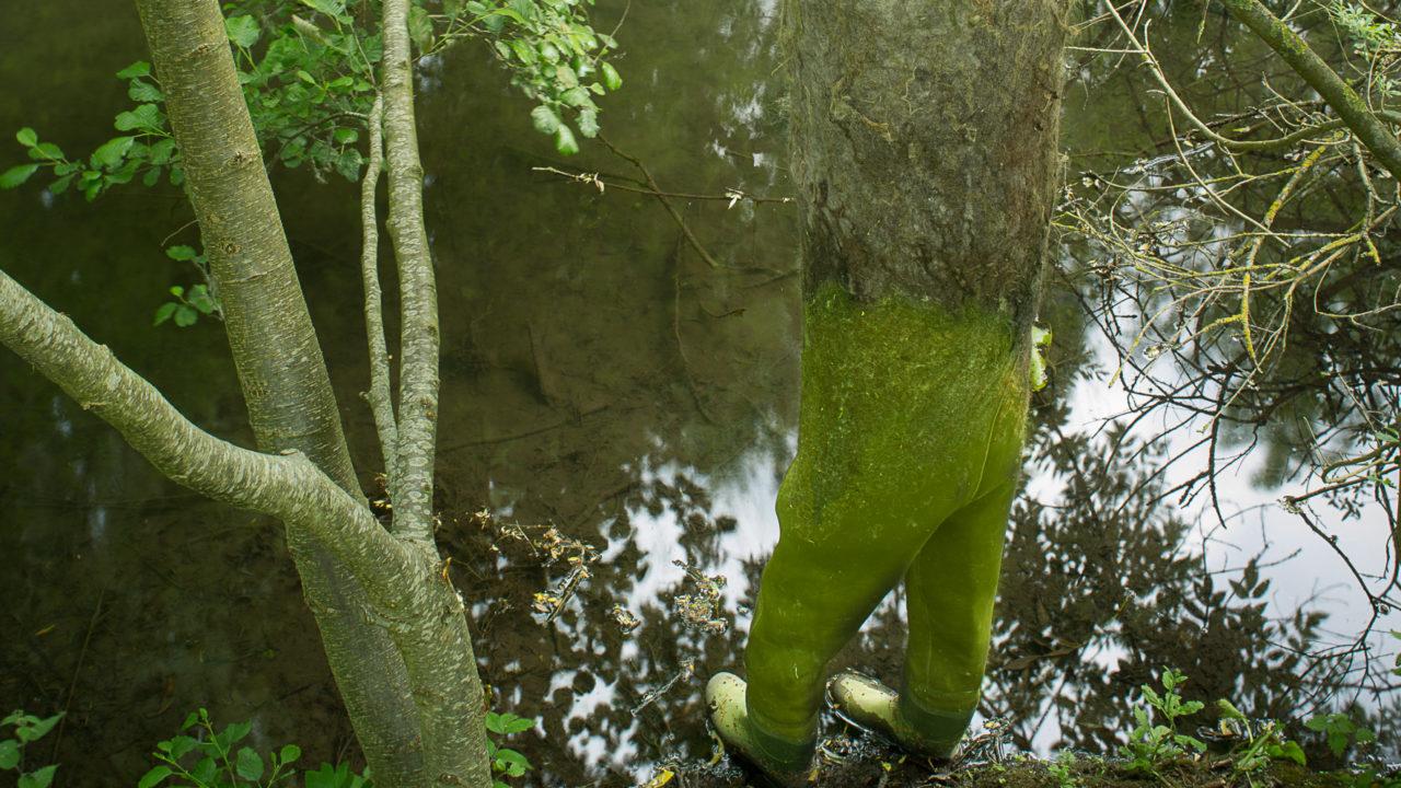 photographie de grandes bottes de pêcheurs, attachées à un arbre et les pieds dans l'eau