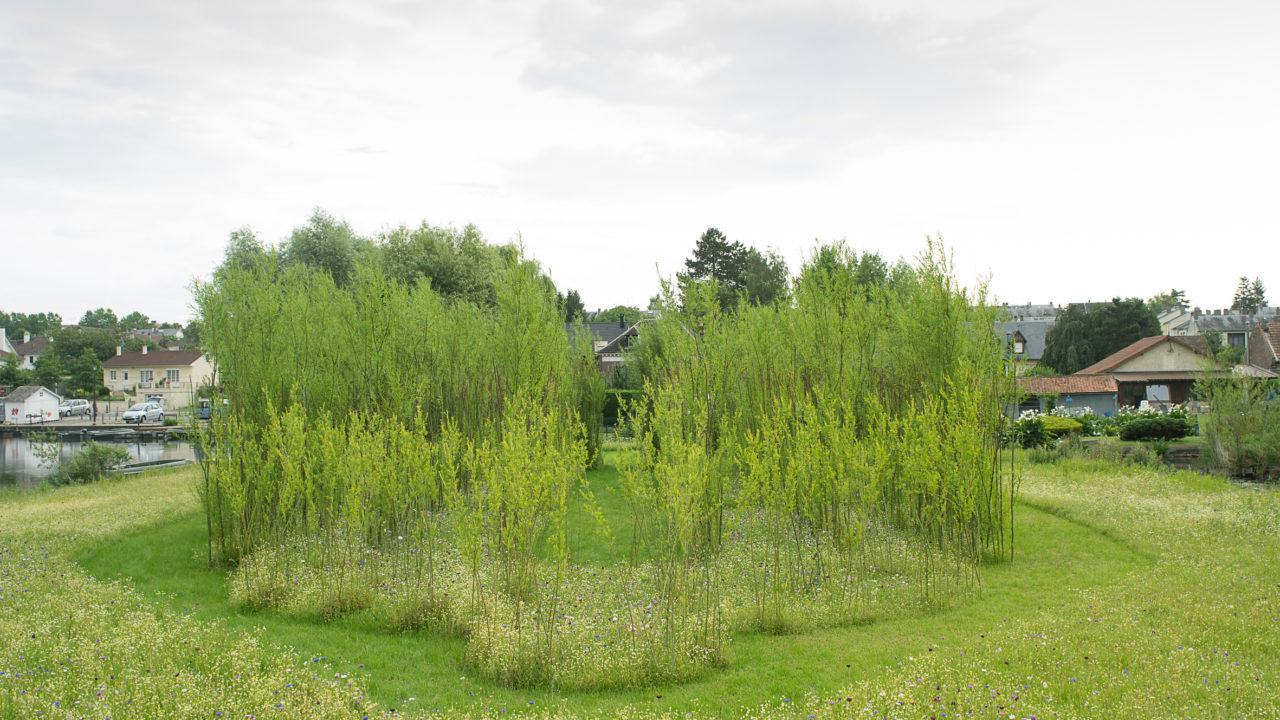photographie d'une forêt de saules structurée sur le plan de la cathédrale d'Amiens, autour une prairie de fleurs