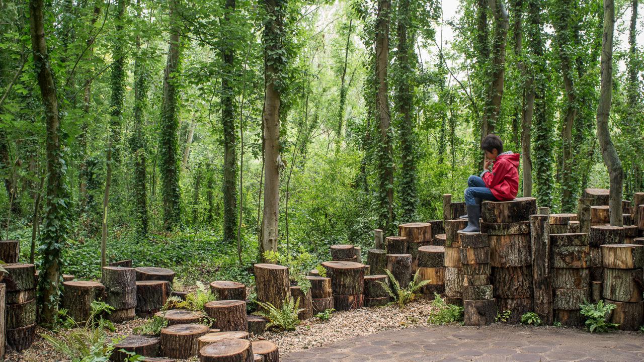 photographie de chemins délimités par des colonnes de rondins de bois, dans un sous-bois. Un enfant est assis dessus.