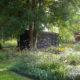 photographie d'un jardin au parterre de fleurs quadrillés en rectangle. Les fleurs sont violettes. Au fond, il y a une cabane en bois noir sous un arbre
