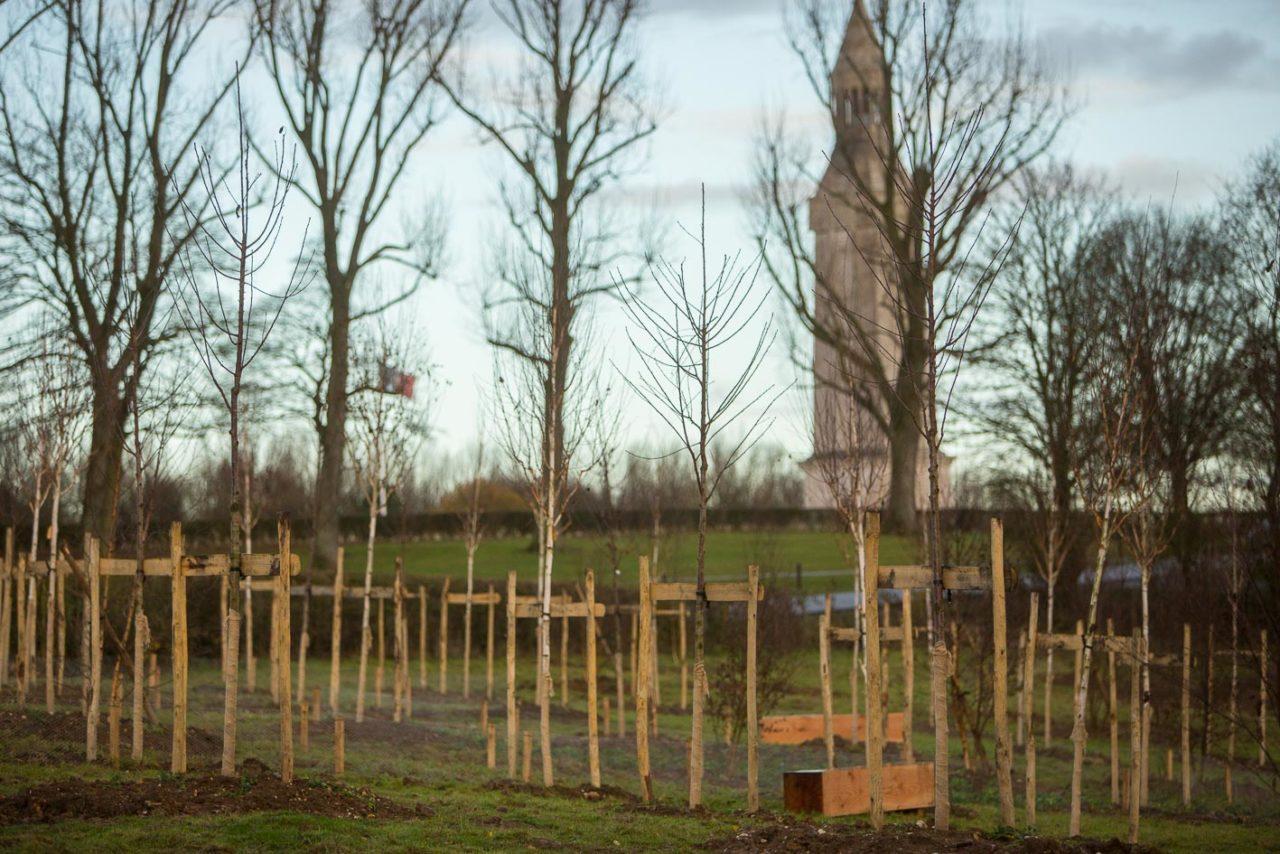 photographie de rangées d'arbres, deux bancs en bois et au troisième plan le monument de Notre-Dame de Lorette