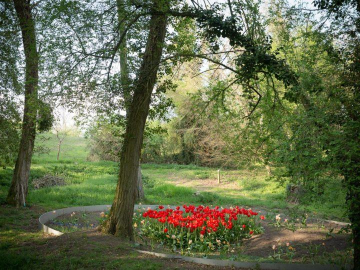 Jardin de la Paix allemand > Cultiver la mémoire, 2018