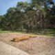 photographie du jardin Drapeau avec deux bancs et un parterre de plantation dans le site de Vimy