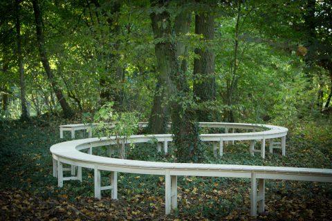 photographie d'un banc blanc, serpentant au travers d'une forêt, slalomant entre les arbres