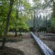 photographie d'un jardin avec un long banc coupant les allées, les arbres poussent sur des parterres circulaires