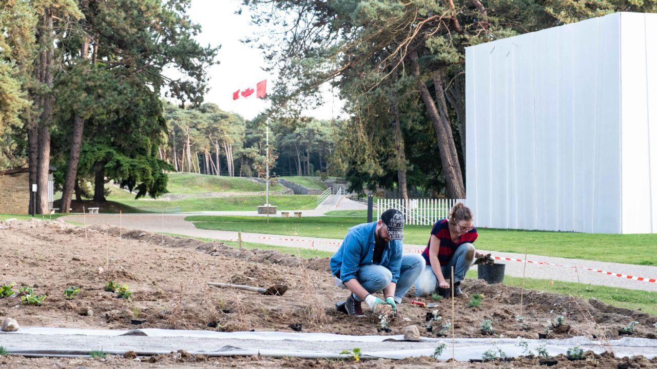 photographie de deux paysagistes entrain de travailler sur le jardin dans le mémorial de Vimy