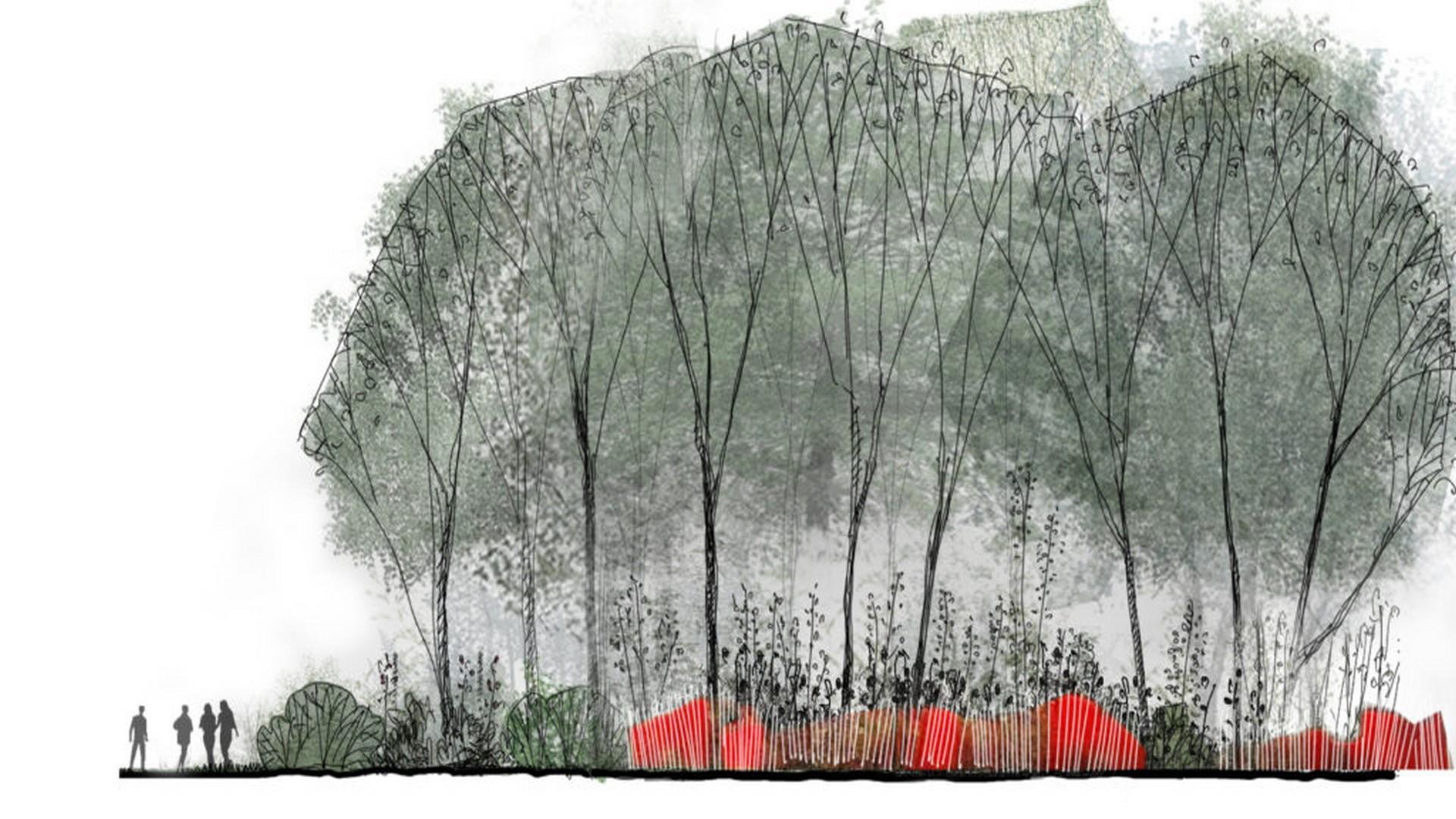 Jardin de 100 ans > French Garden of Peace, 2019