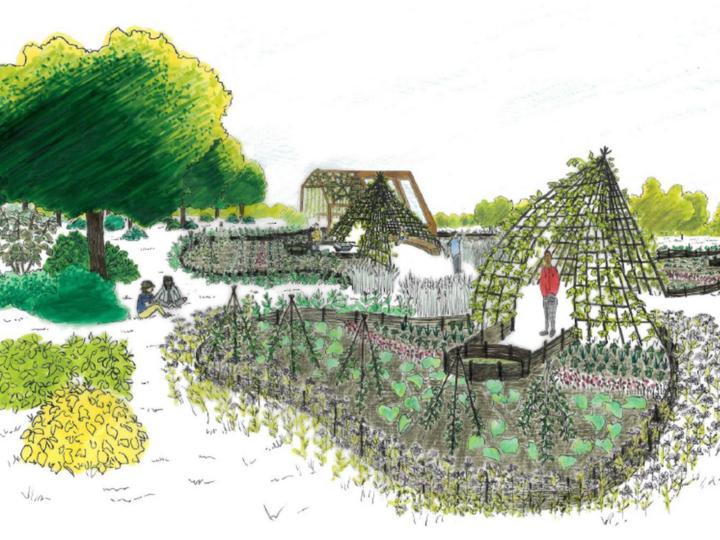Projet en cours > Vergers Urbains, Atelier l'Embellie, Epigénie, 2020 – 2021